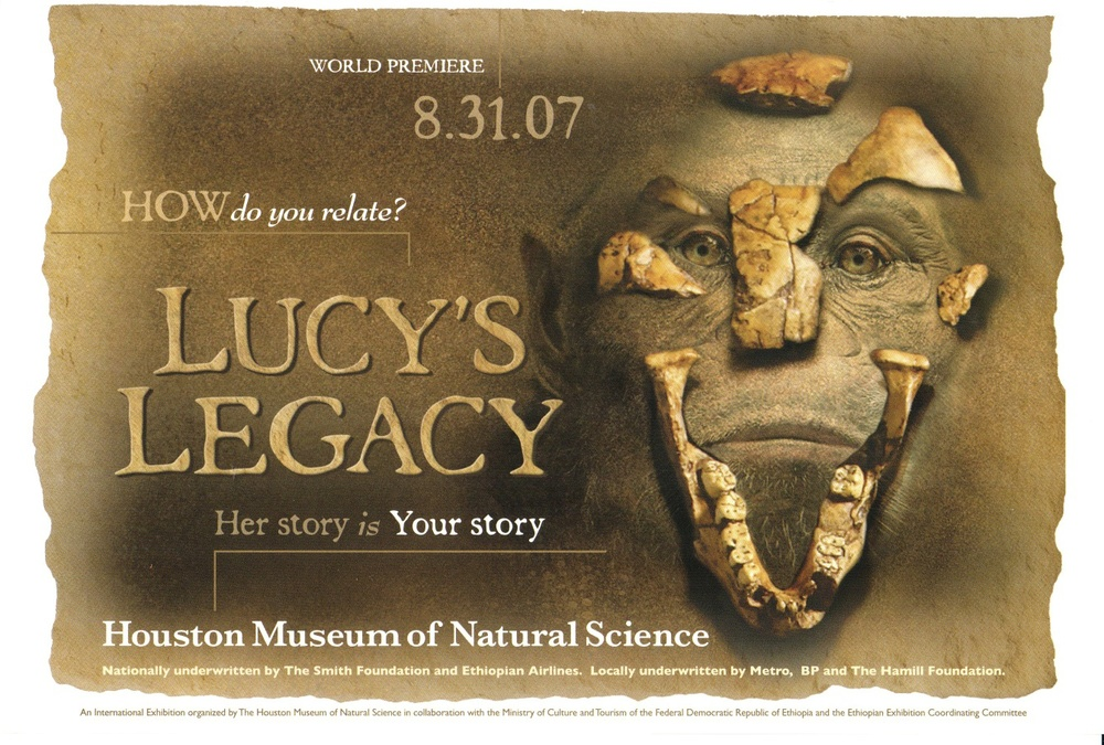Flier from  Lucy's Legacy , 2007, courtesy of the Houston Museum of Natural Sciences.
