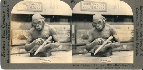 Aimé Rutot's reconstruction of the Piltdown, Eoanthropus dawsonii.  Card from Keystone View Company, 1920s.  Still tracking down the museum that ran this exhibit...