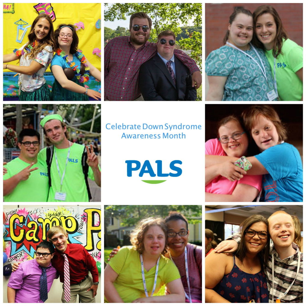 September brought lots of exciting announcements and we've recapped them all in this month's PALS Post. Check out our monthly newsletter  here  and make sure you subscribe to stay informed!
