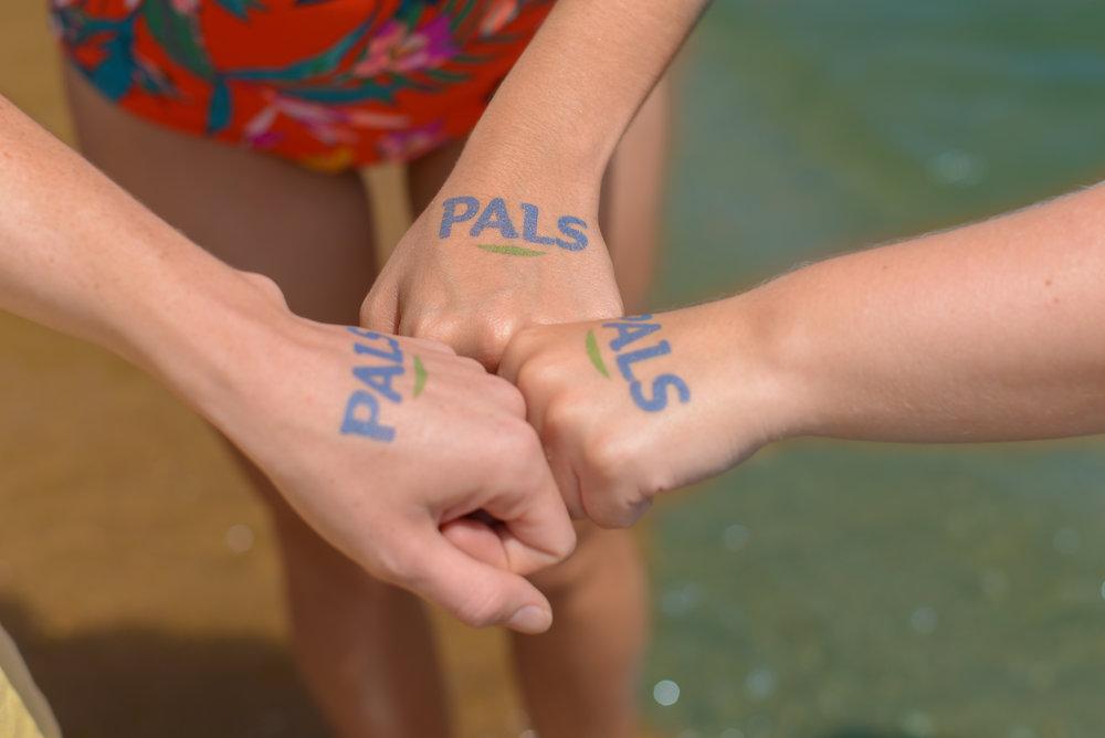 PALS Branding (TOP PIC).jpg
