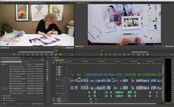 Timeline for our three hour instructional edit of Rebecca Kahrs. As you can see, we had a bit of editing to do...