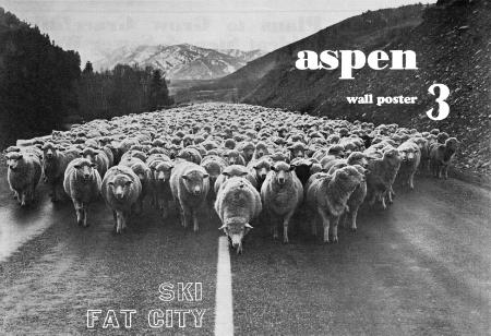 Aspen Wall Poster #3.jpg