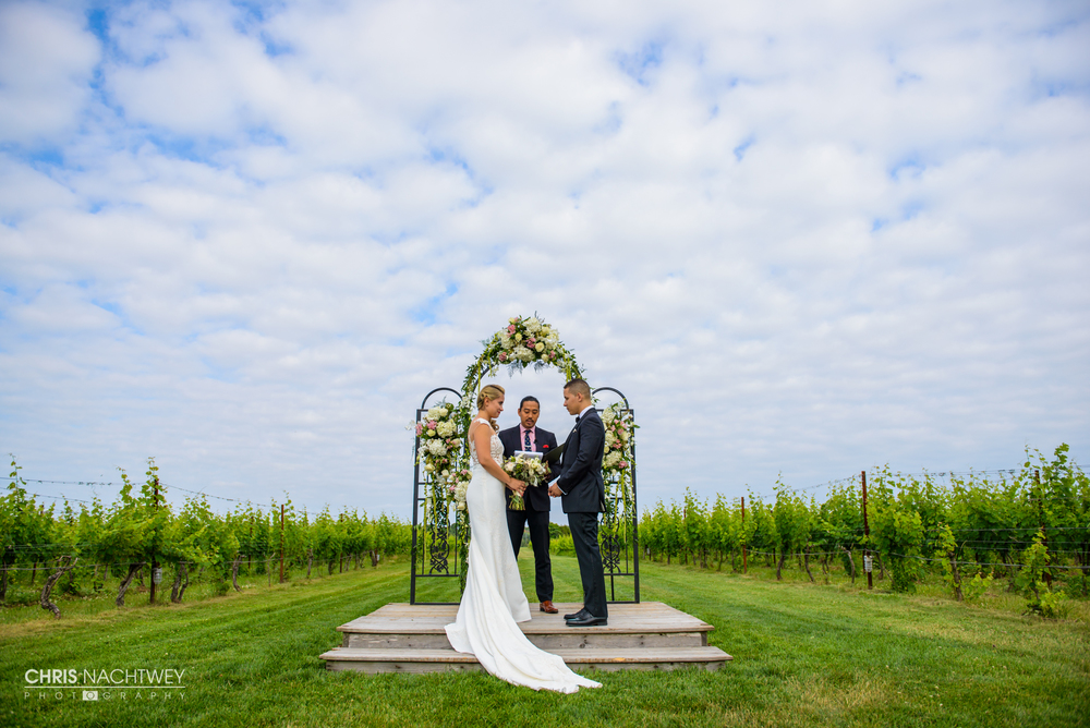 wedding-saltwater-farm-vineyard-photos-stonington-ct-chris-nachtwey-photography-2016-ana-austin-21.jpg