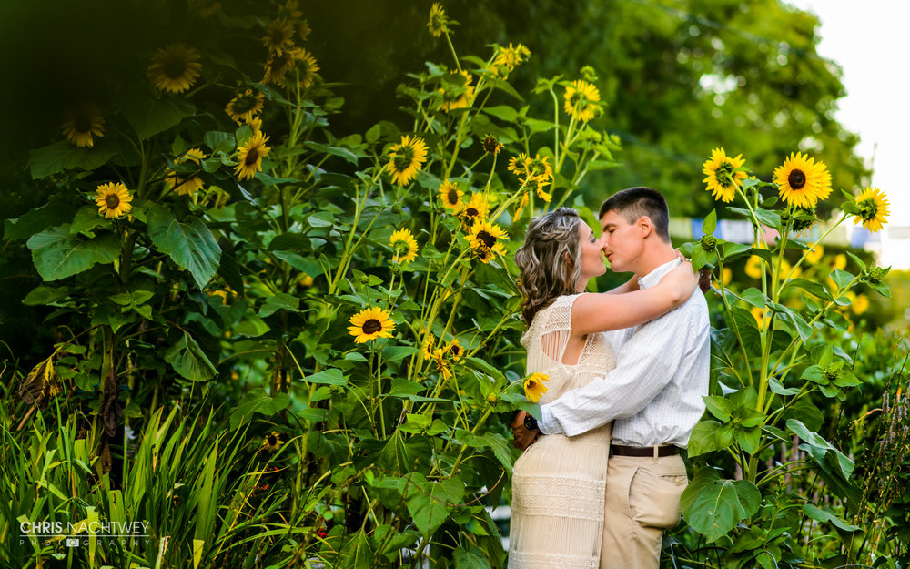 engagement-photos-the-book-barn-niantic-ct-chris-nachtwey-photography-1.jpg