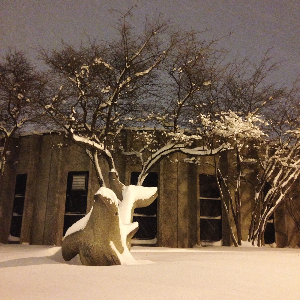 We finished packing Timmy up after dark the night before leaving.  This snow dolphin was playing across the street.
