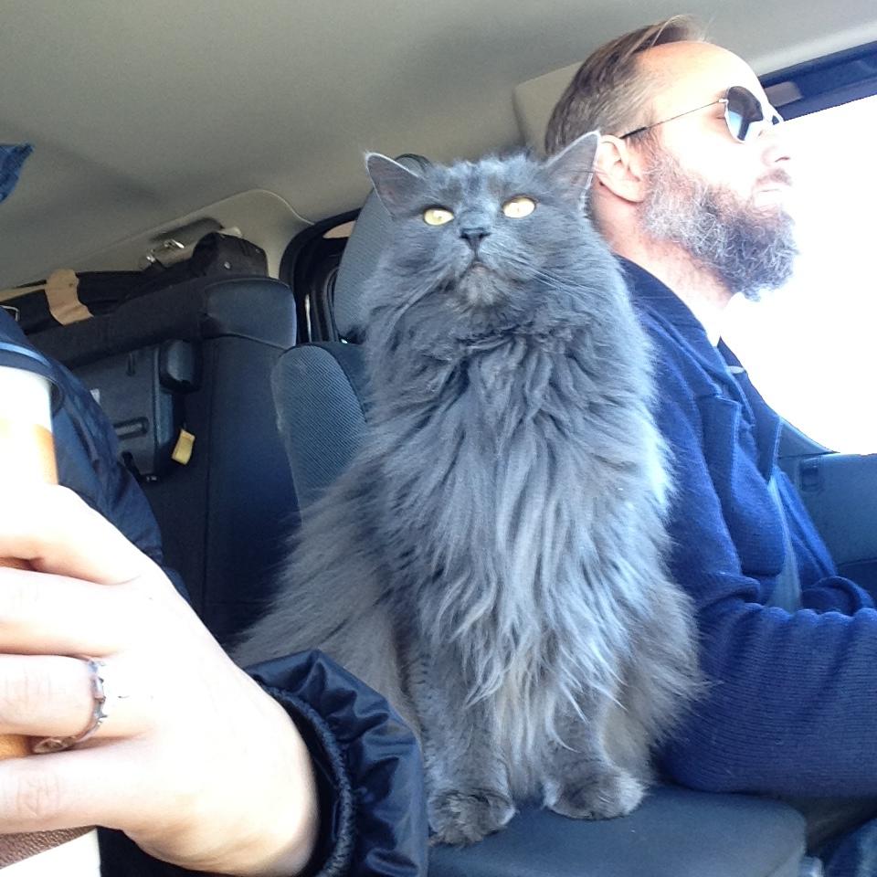 Floops is a fantastic navigator