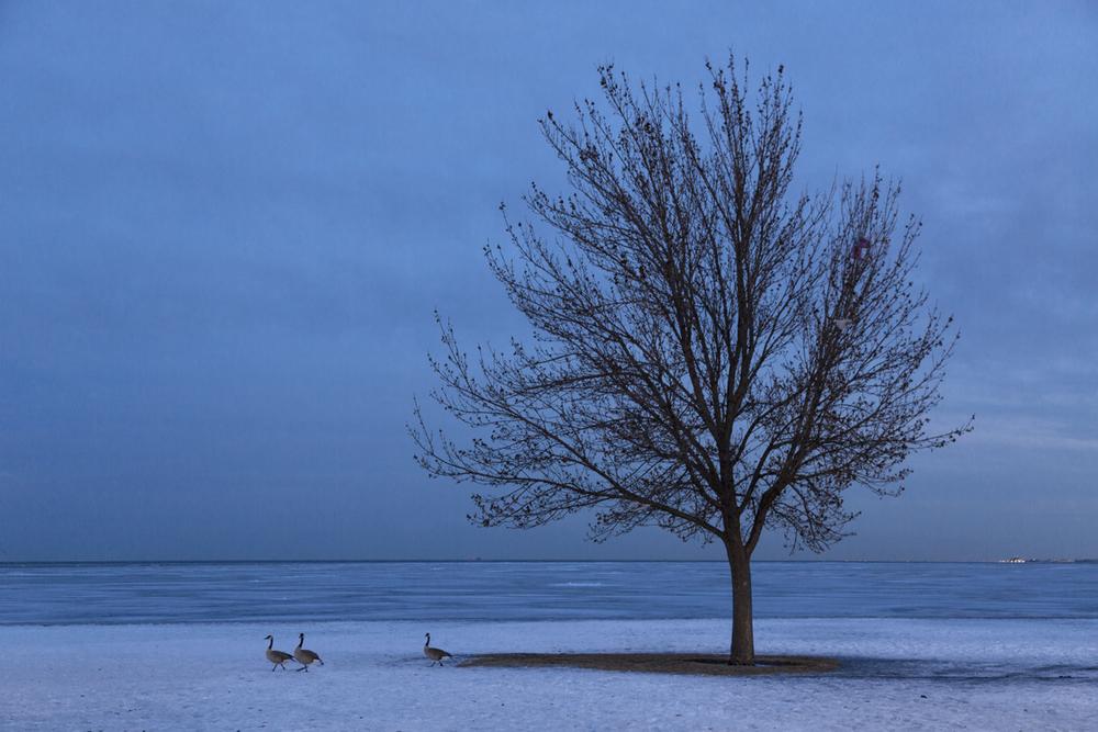 Lake_MI_Frozen_MK3_6704 as Smart Object-1.jpg
