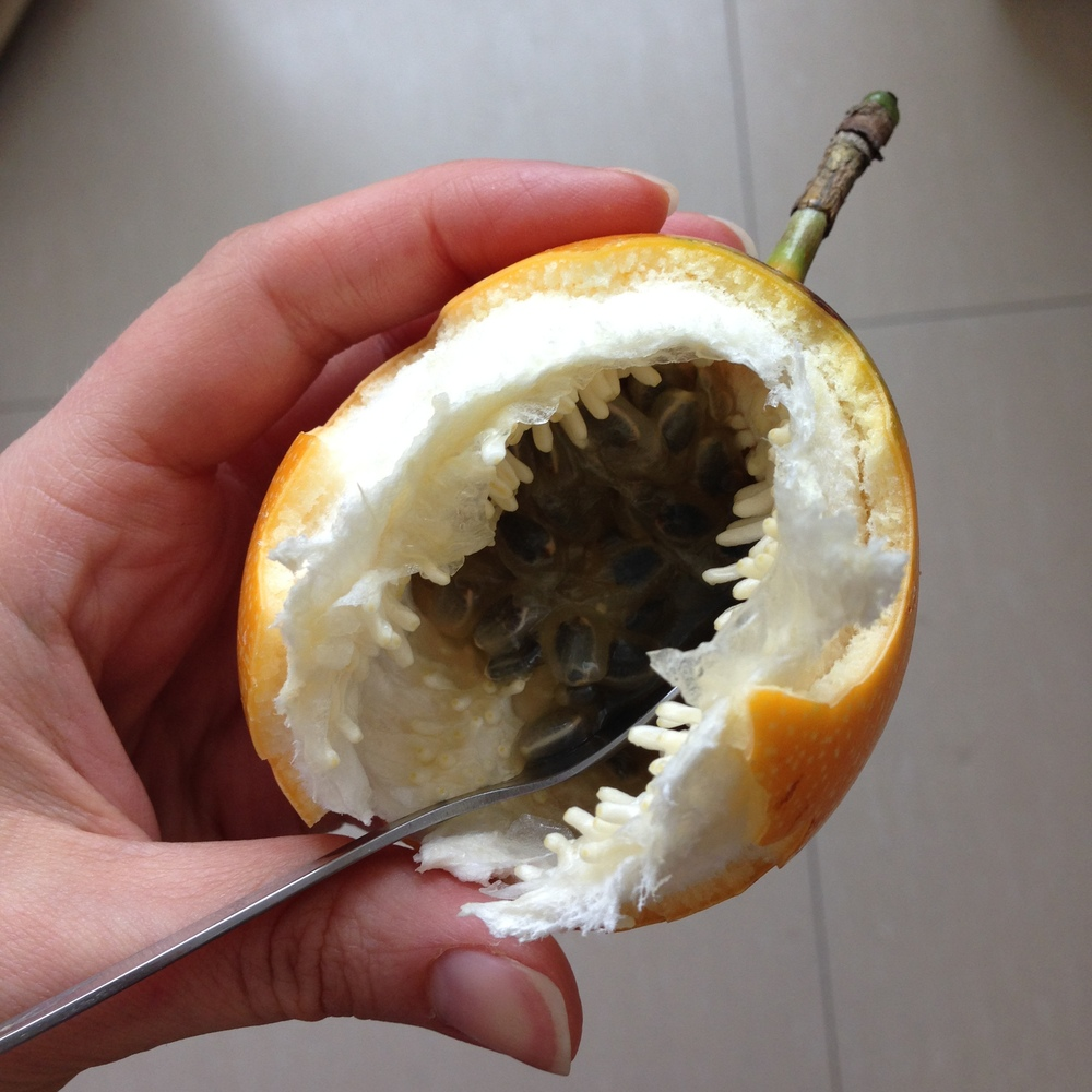 Grenadilla, the best fruit for breakfast ever. (my mother refers to this as mocos, which is gross and not the best breakfast ever)