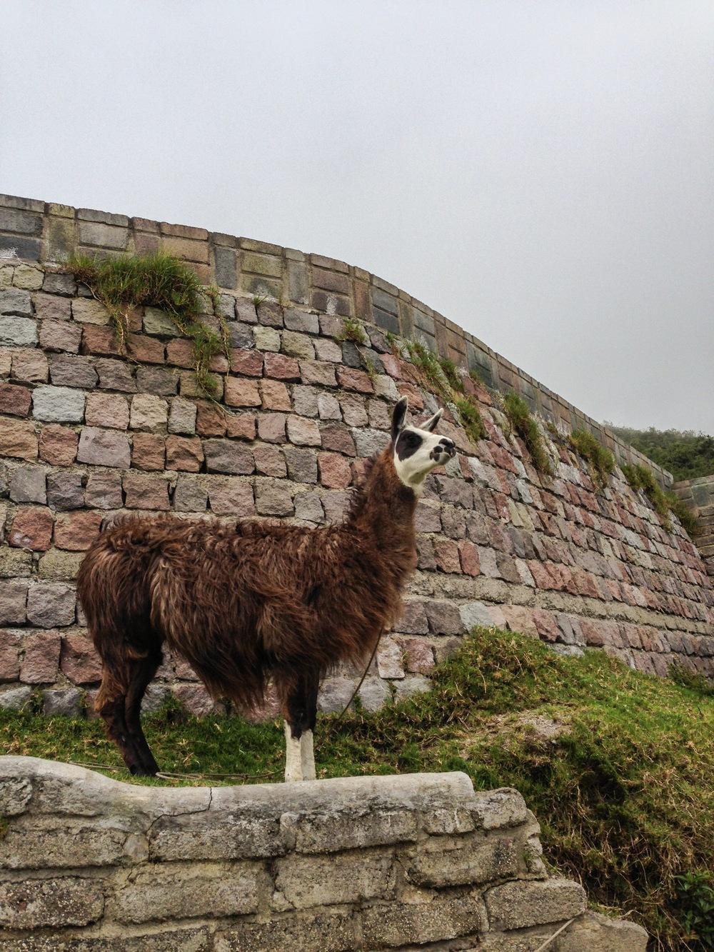 Ecuador1_19.JPG