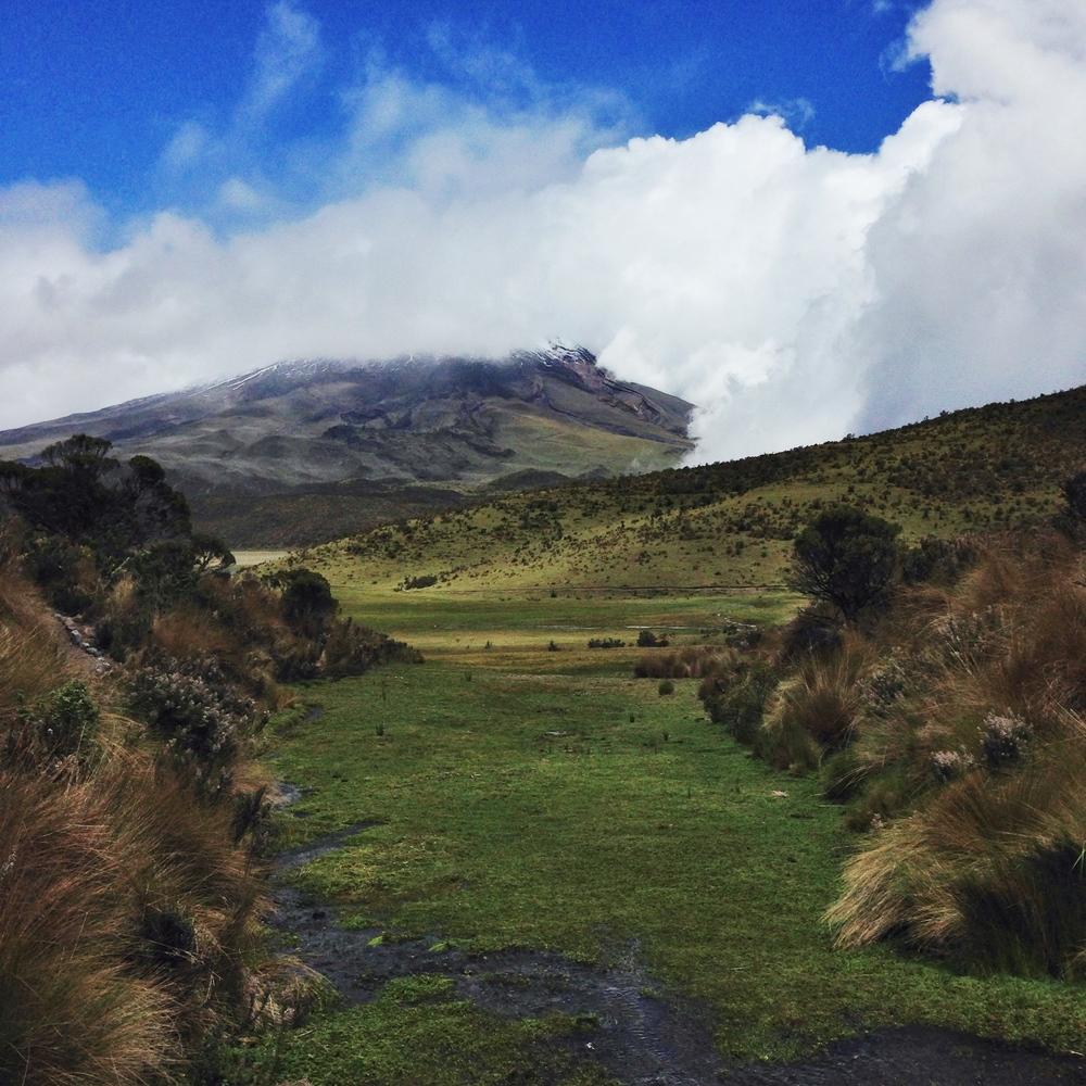 Ecuador6_01.JPG