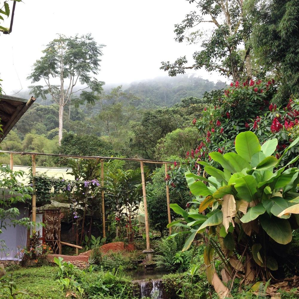Ecuador7_22.JPG