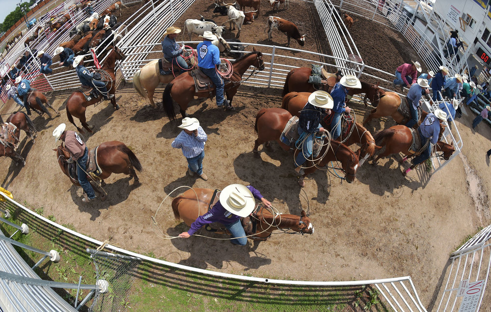 Tie down ropers gather near the chutes prior to their event Saturday July 28, 2018 during the 122nd Cheyenne Frontier Days Rodeo in Cheyenne, Wyoming.