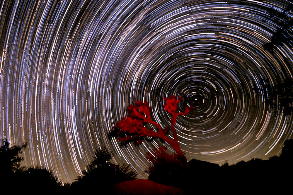 A time-lapse photo captures star trails seen above the Joshua Tree National Park in Twentynine Palms, California, September 9, 2018.