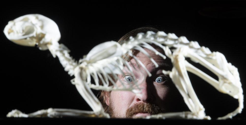 Jeremy Schott peers through a cat skeleton from inside his gallery, The Dark Art Emporium, in Long Beach November 29, 2018.