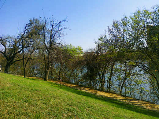 Enjoying a little break by  Lady Bird Lake  .