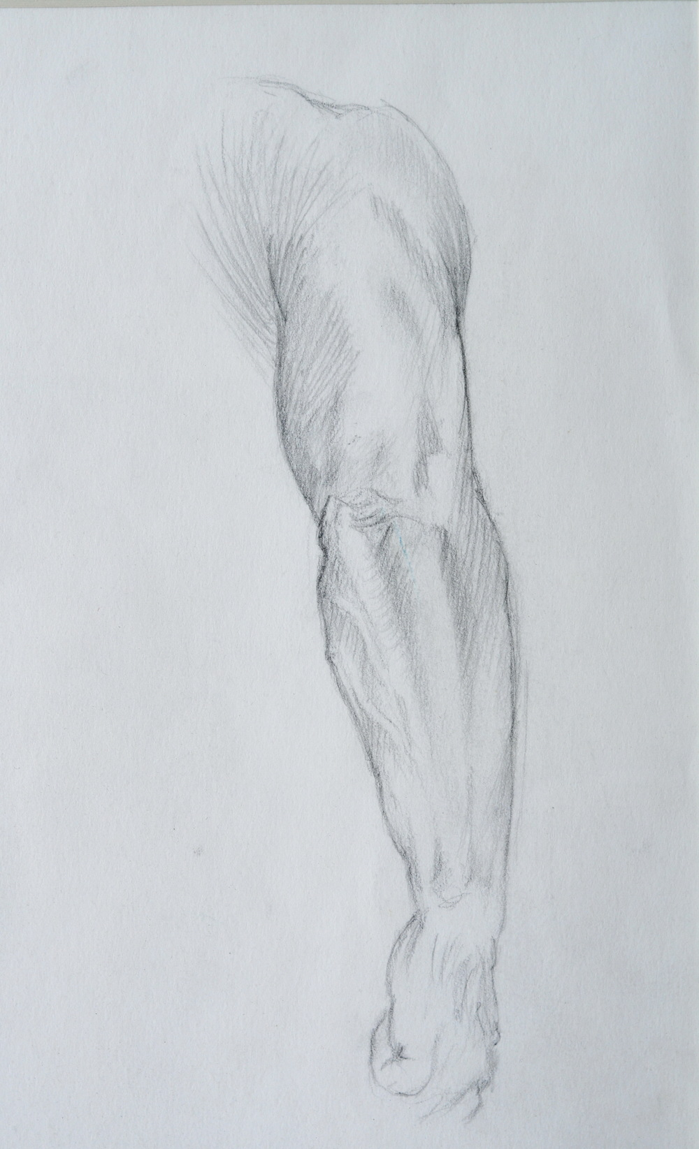 Male Arms (detail) ,  study. 1992. Graphite on paper. Available for purchase.