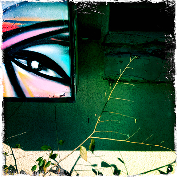 An eye painted on the side of a dumpster is only part of the found design.