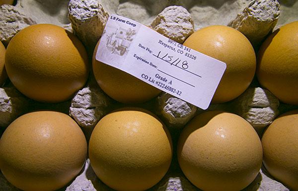 MG_Eggs_SM_ss.jpg