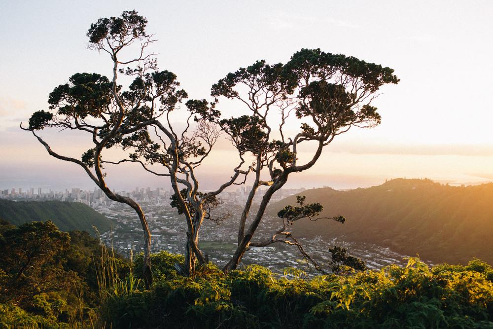 travel-hawaii-oahu-kauai-maui-005.jpg