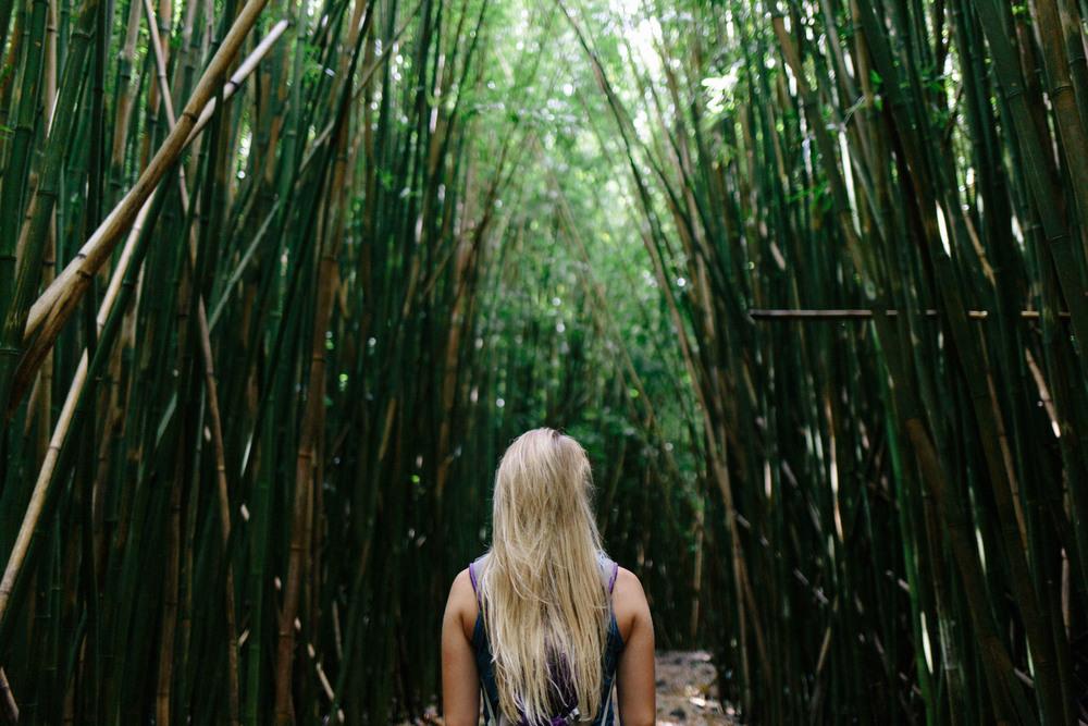 travel-hawaii-oahu-kauai-maui-035.jpg