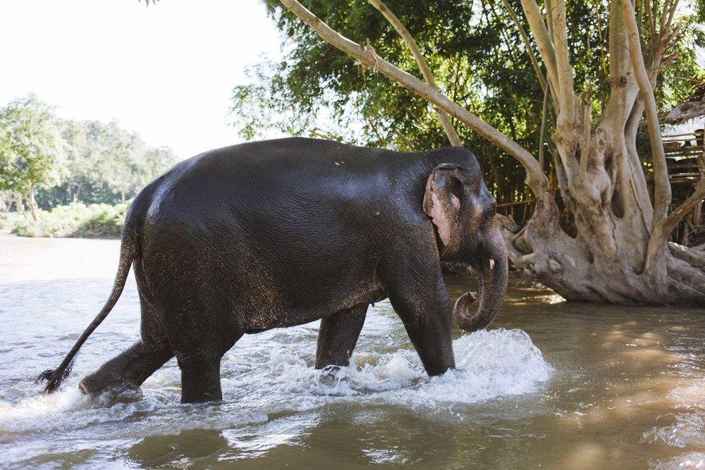 thailand_budget_travel_048.jpg