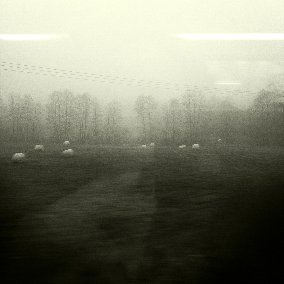 Fog can be so romantic II, Germany 2012  ©   Miri Berlin Photography