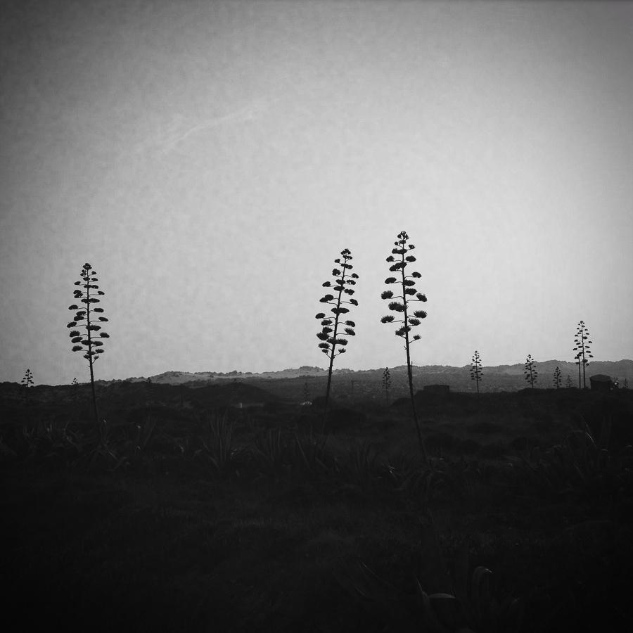 Portugal 2015 © Miri Berlin Photographie