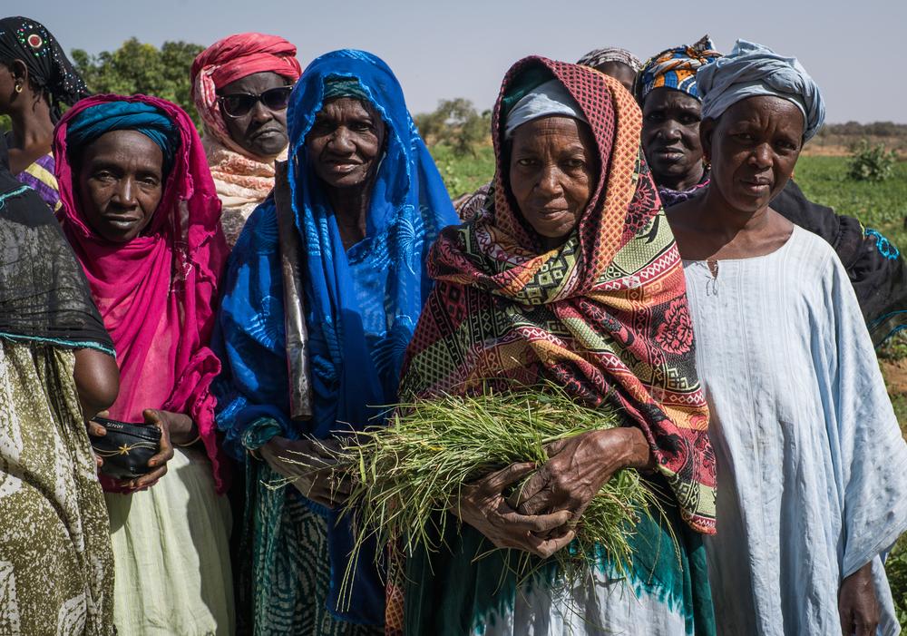 gardeners-mauritania.jpg
