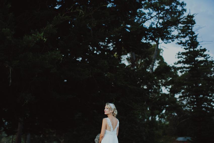 140207_wedding_nicole_nathan_ss-234.jpg
