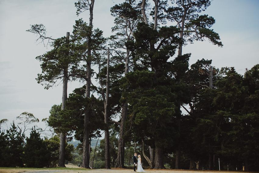 140207_wedding_nicole_nathan_ss-238.jpg