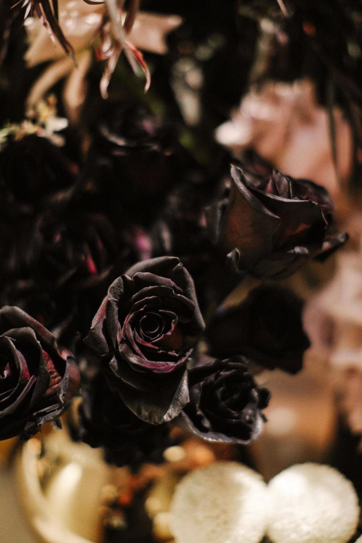 justinaaron-catalina-rosebay-wedding-courtney-alex-096.jpg