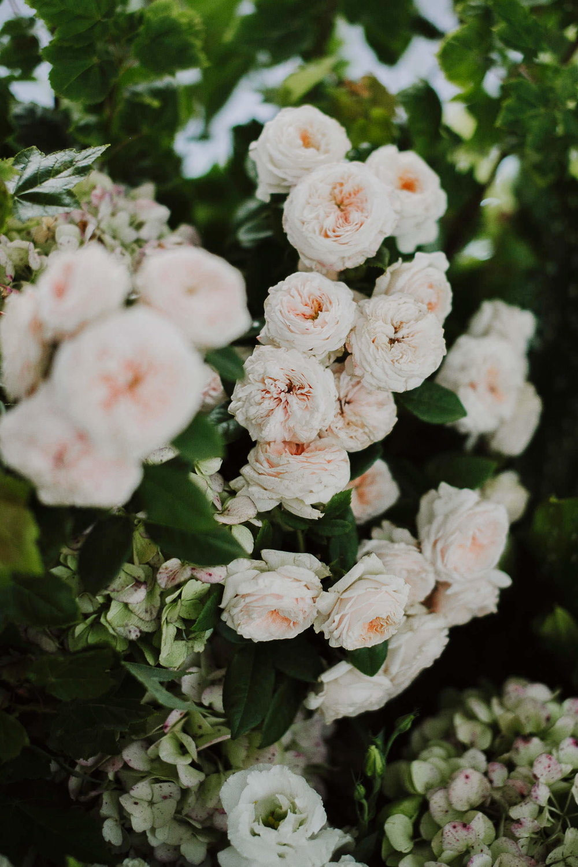 justinaaron-catalina-rosebay-wedding-tracey-christopher-071.jpg