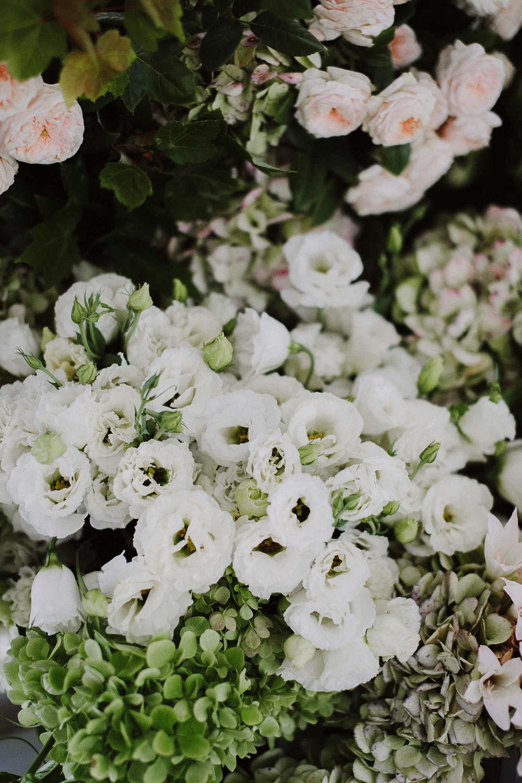 justinaaron-catalina-rosebay-wedding-tracey-christopher-072.jpg