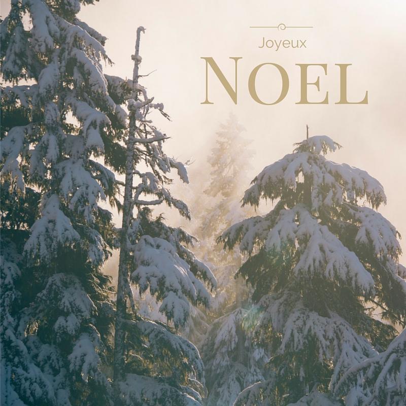 Joyeux Noel from Shiny Happy Bright