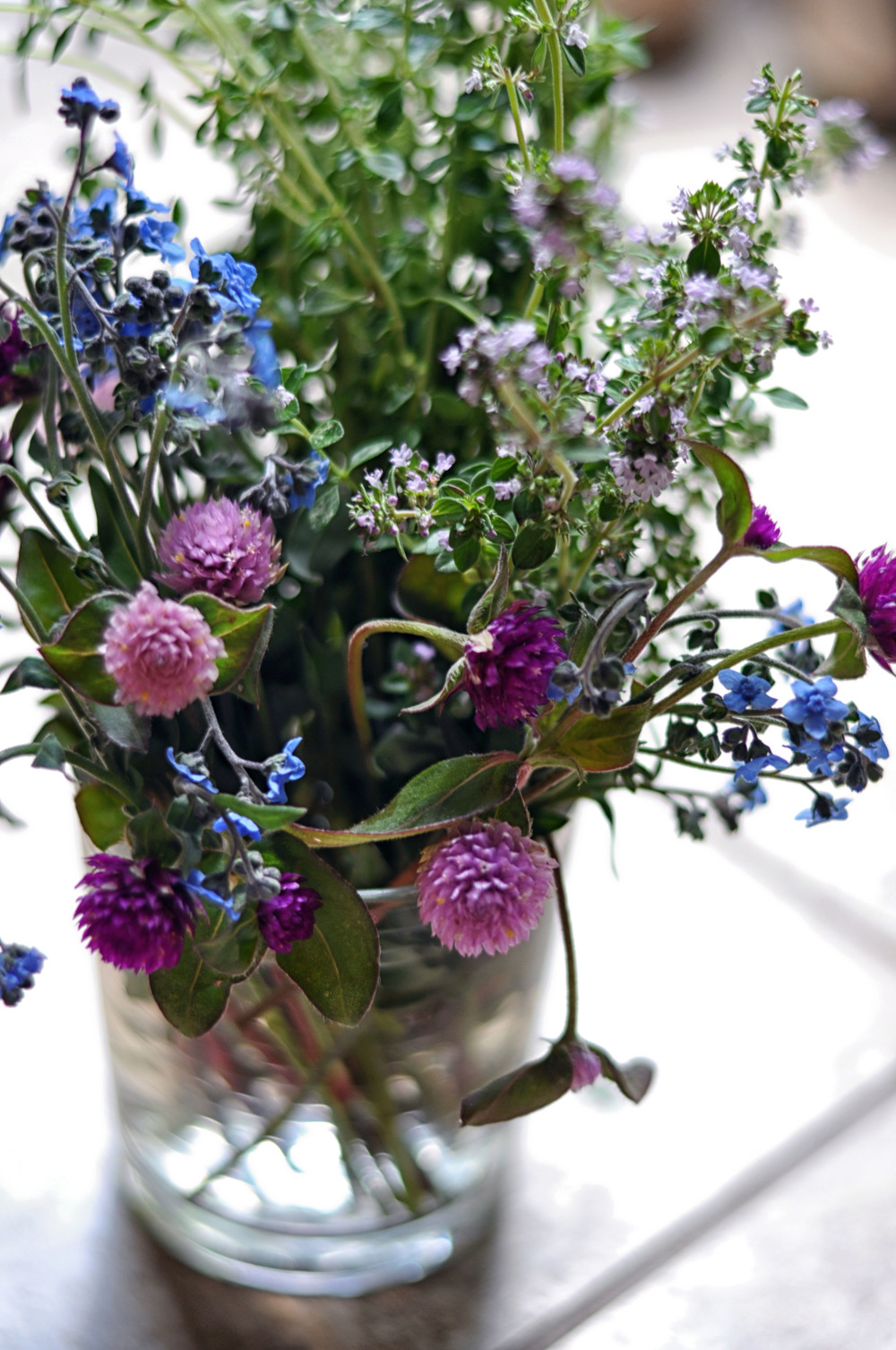 A List Of Edible Flowers How To Use Them This Healthy Table