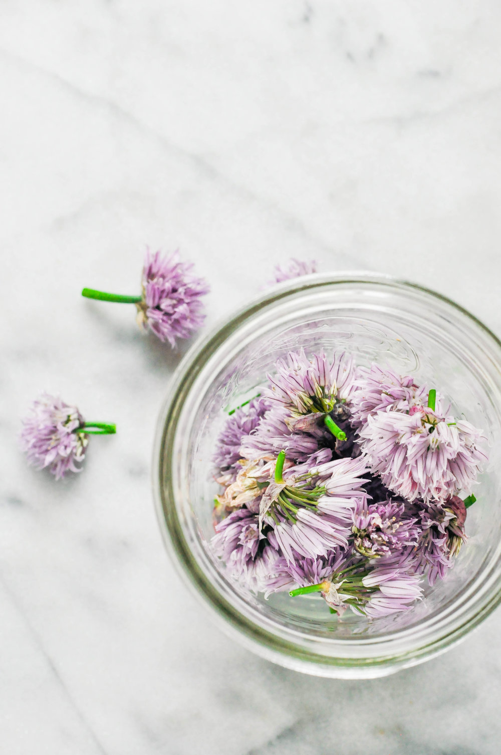 How to Make & Use Chive Blossom Vinegar | This Healthy Table