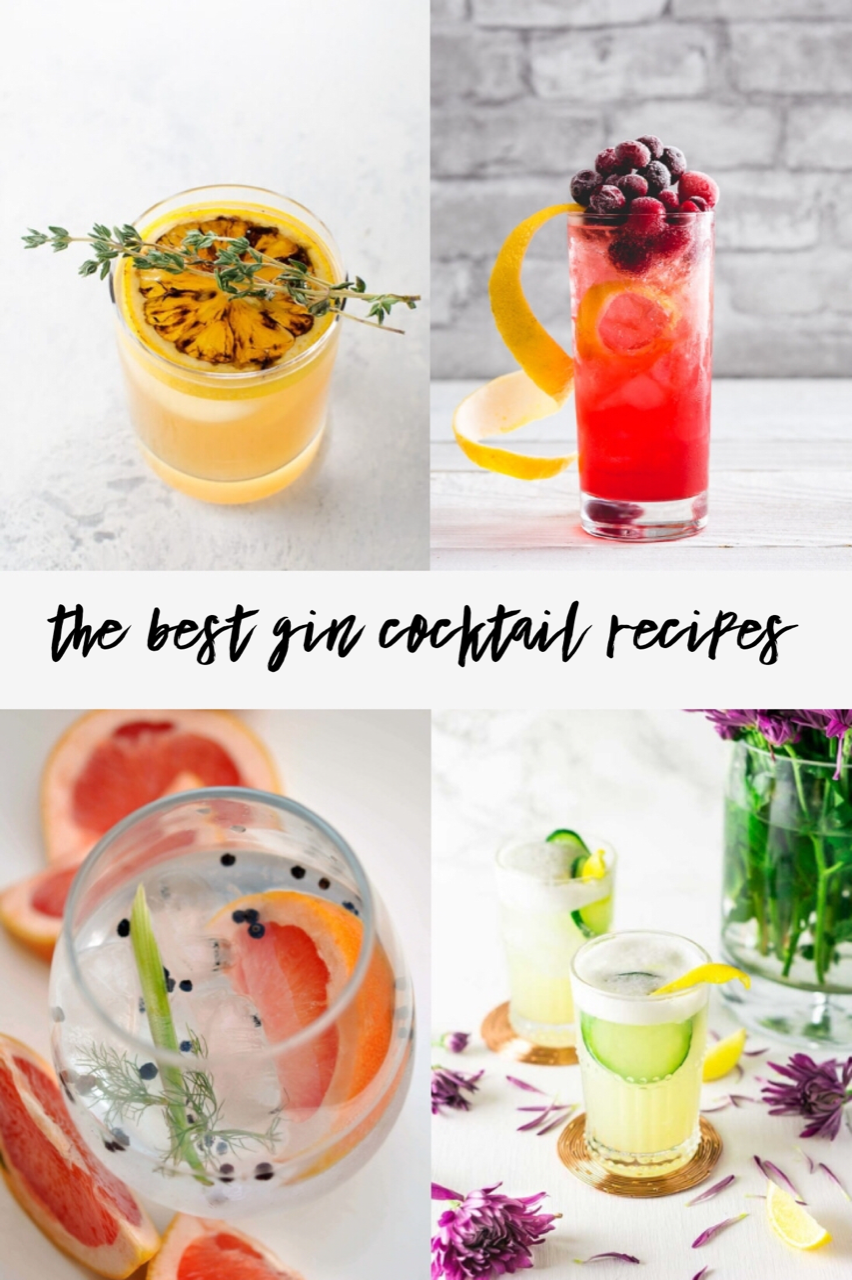 If you're a cocktail fan or just looking for some new ways to use gin, I think you'll love these delicious, gin based cocktail recipes.