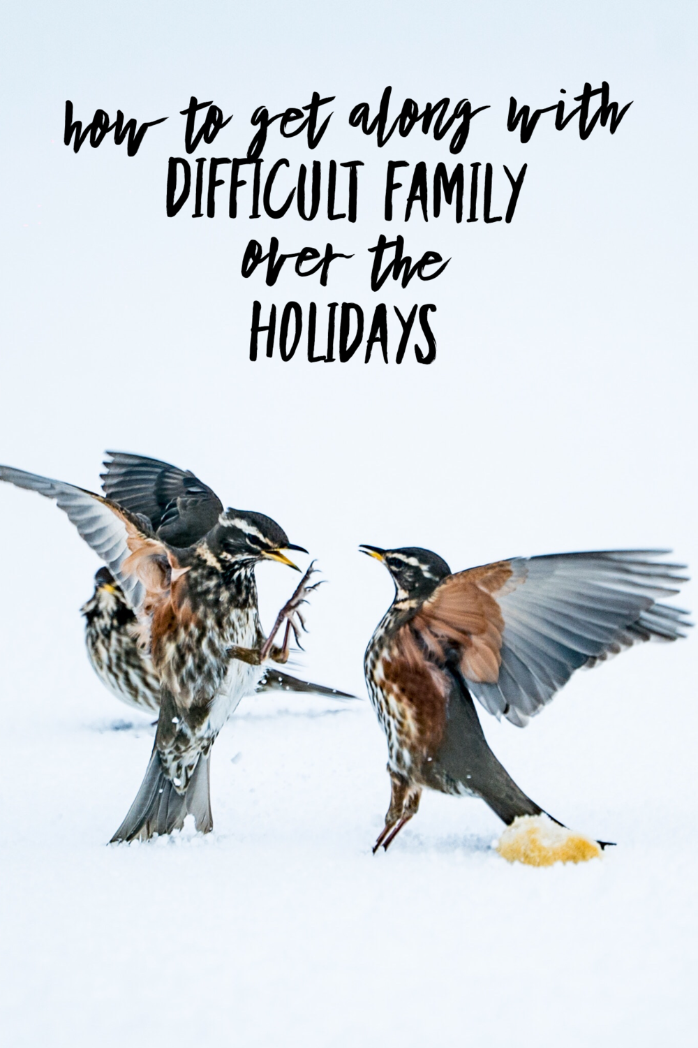 How to Survive the Holidays with Difficult Family