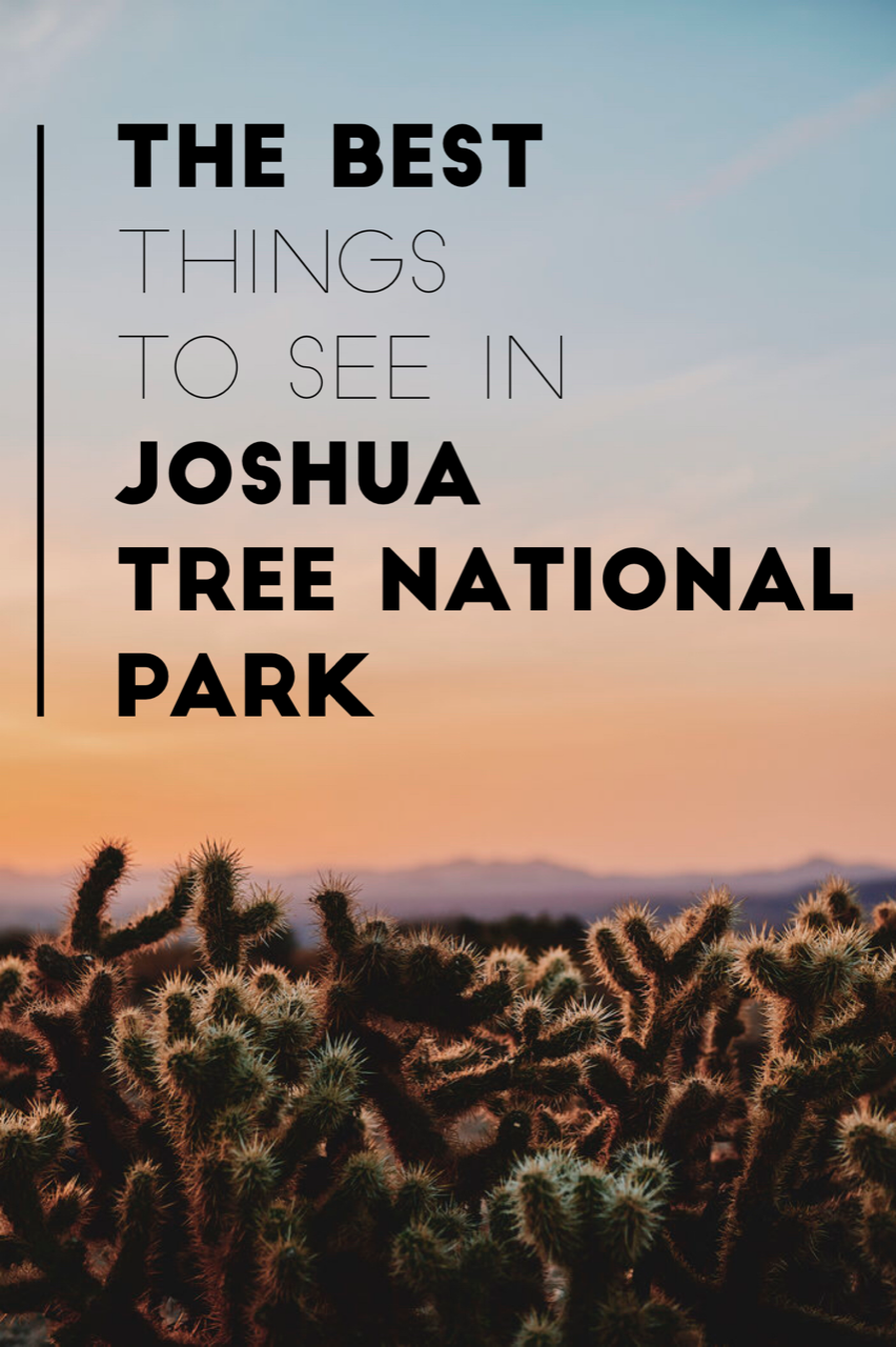 10 Reasons You Should Visit Joshua Tree National Park. The incredibly unique desert landscape of Joshua Tree makes for stunning vistas, excellent stargazing, and hiking. Information on photography, camping, things to do in Joshua Tree.