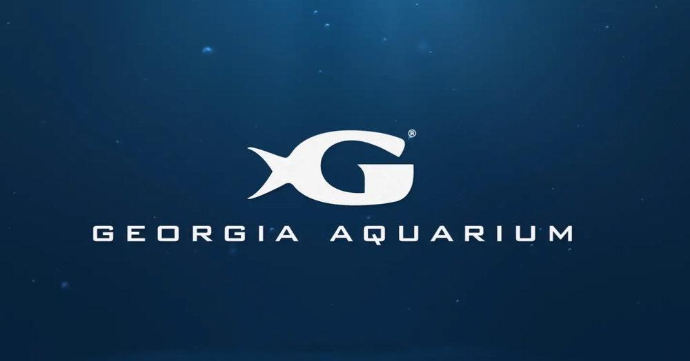 Aquarium Still.jpg