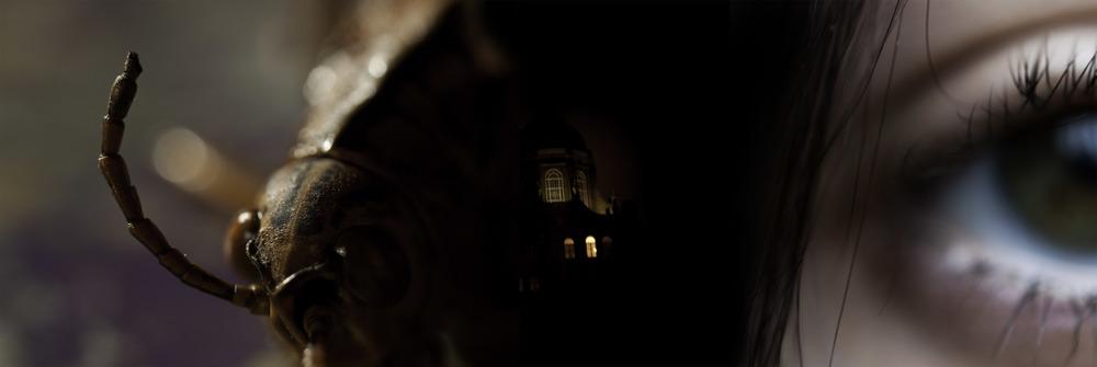 night_light.jpg