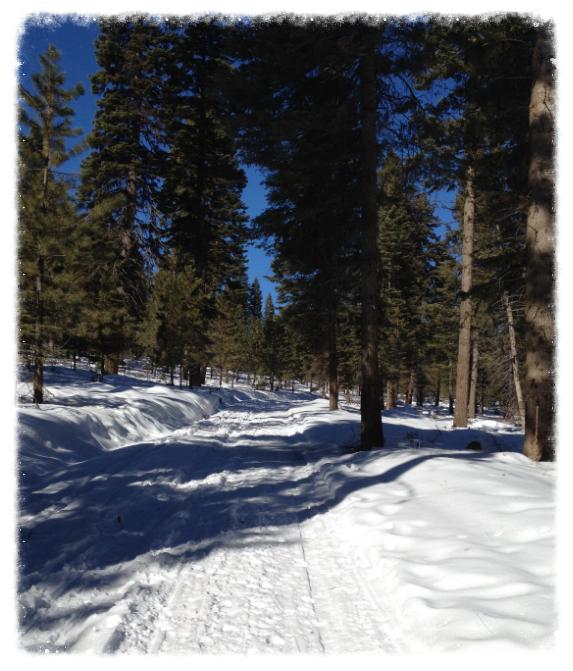 Three-mile Hike