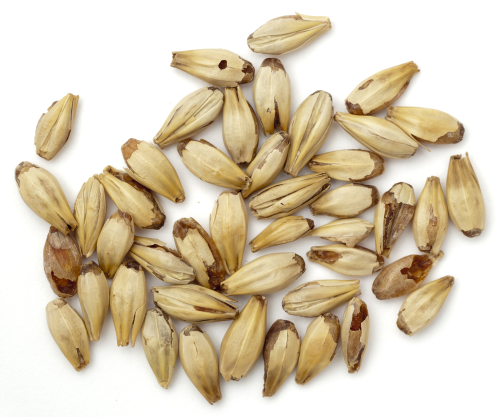 "A ""crystal"" malt."