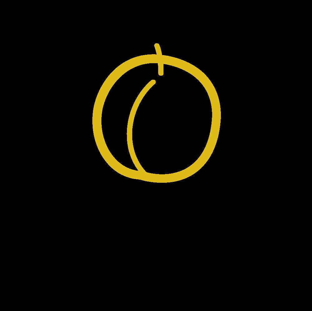 Apricot-logo.png
