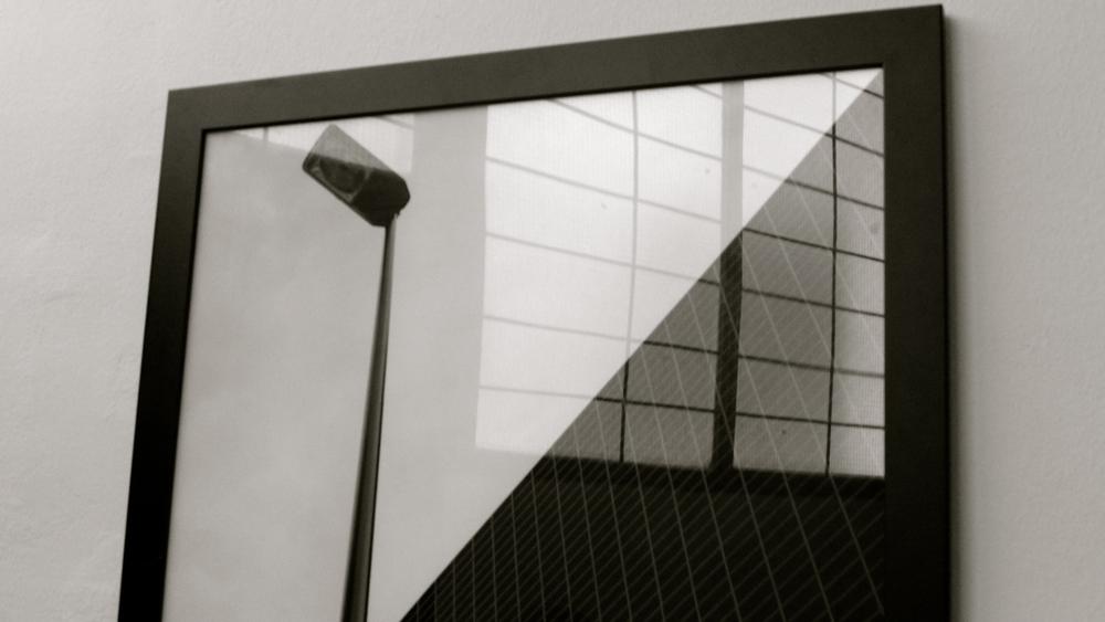 Mooses fotógrafo - 10