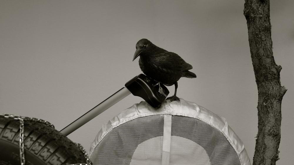 Recambios Gran Vía cuervos - 1