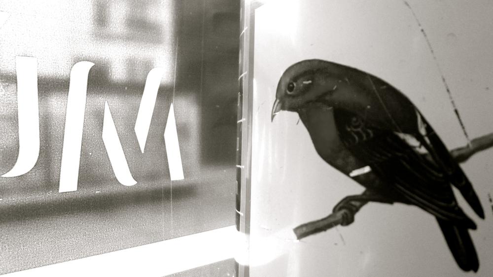 Mù chos  pájaros - 1