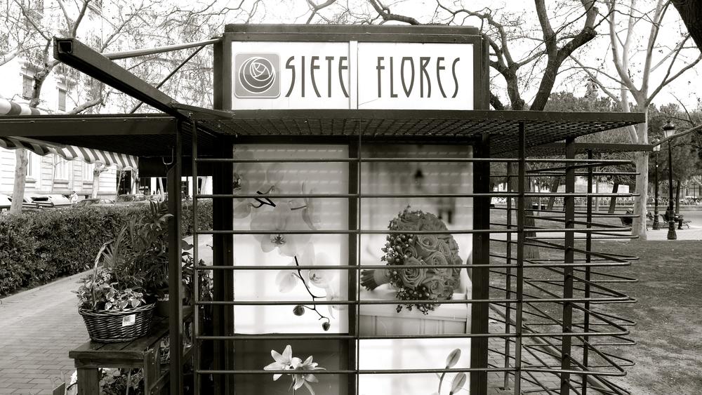 Siete flores