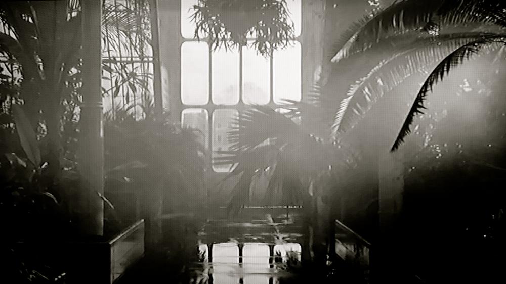 Kew - 1