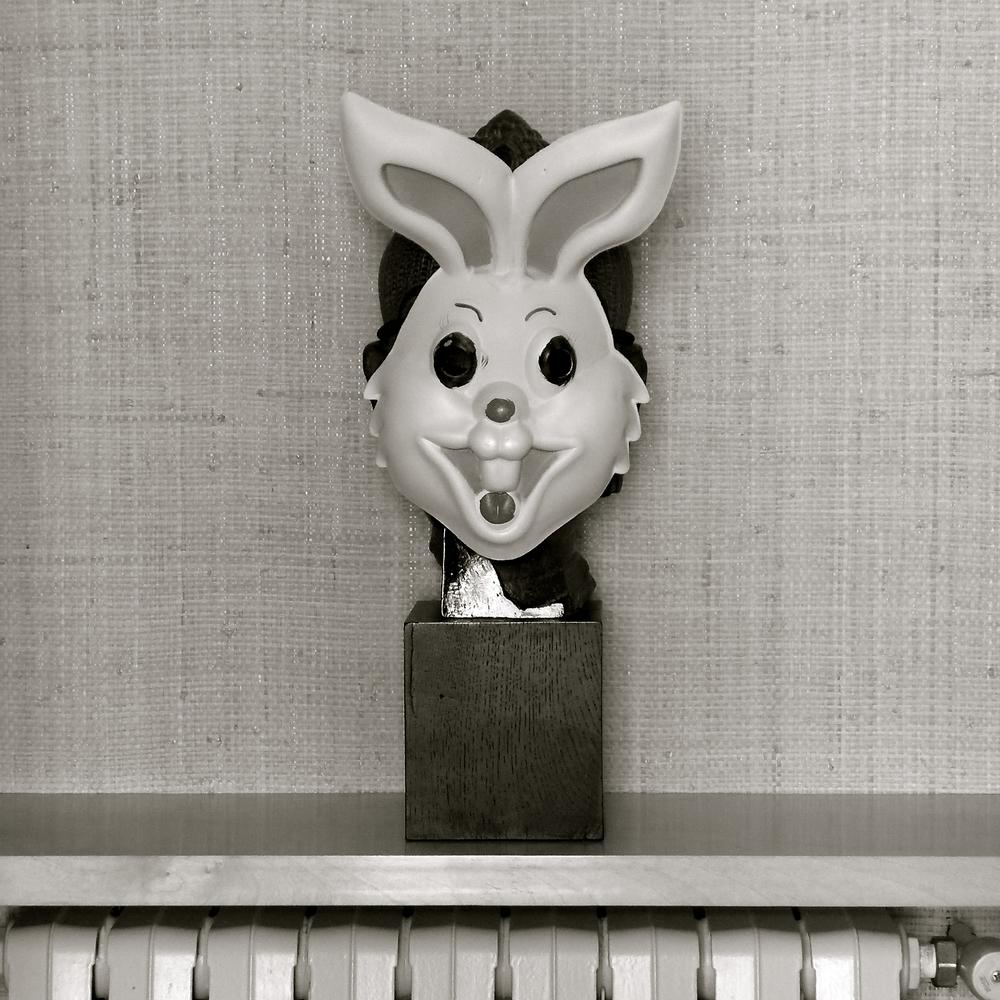 Conejo de culto - 5